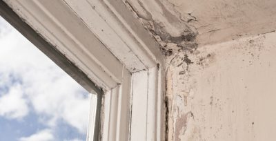 What exactly is Rising Damp?