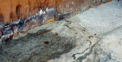 What is Wet Rot