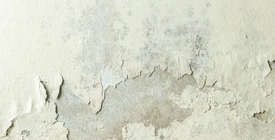 Are you having a Damp Issue?