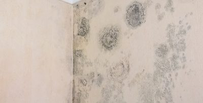 What Is Penetrating Damp