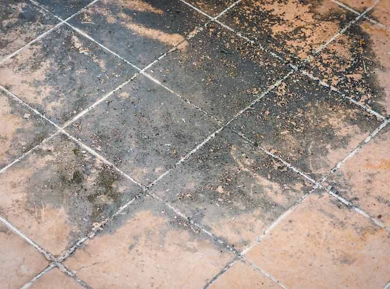 London Floor Treatment Repair Southern Damp Proofing